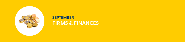 Firms and Finances